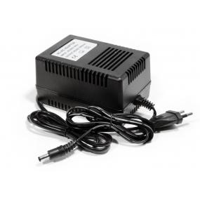 NEOSTAR Stecker-Netzteil 24V AC, 2A für Kameras (48 Watt)
